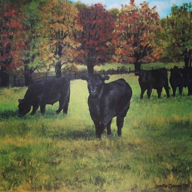 Cows: Pasture